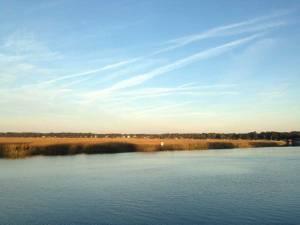 Lady's Island. Actually just a pretty salt marsh.