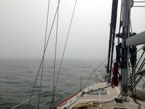 Thick fog in Mosquito Lagoon caused us to veer off the channel and run aground.